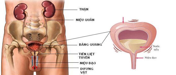 di-tieu-dem-nhieu-lan-co-chua-khoi-khong